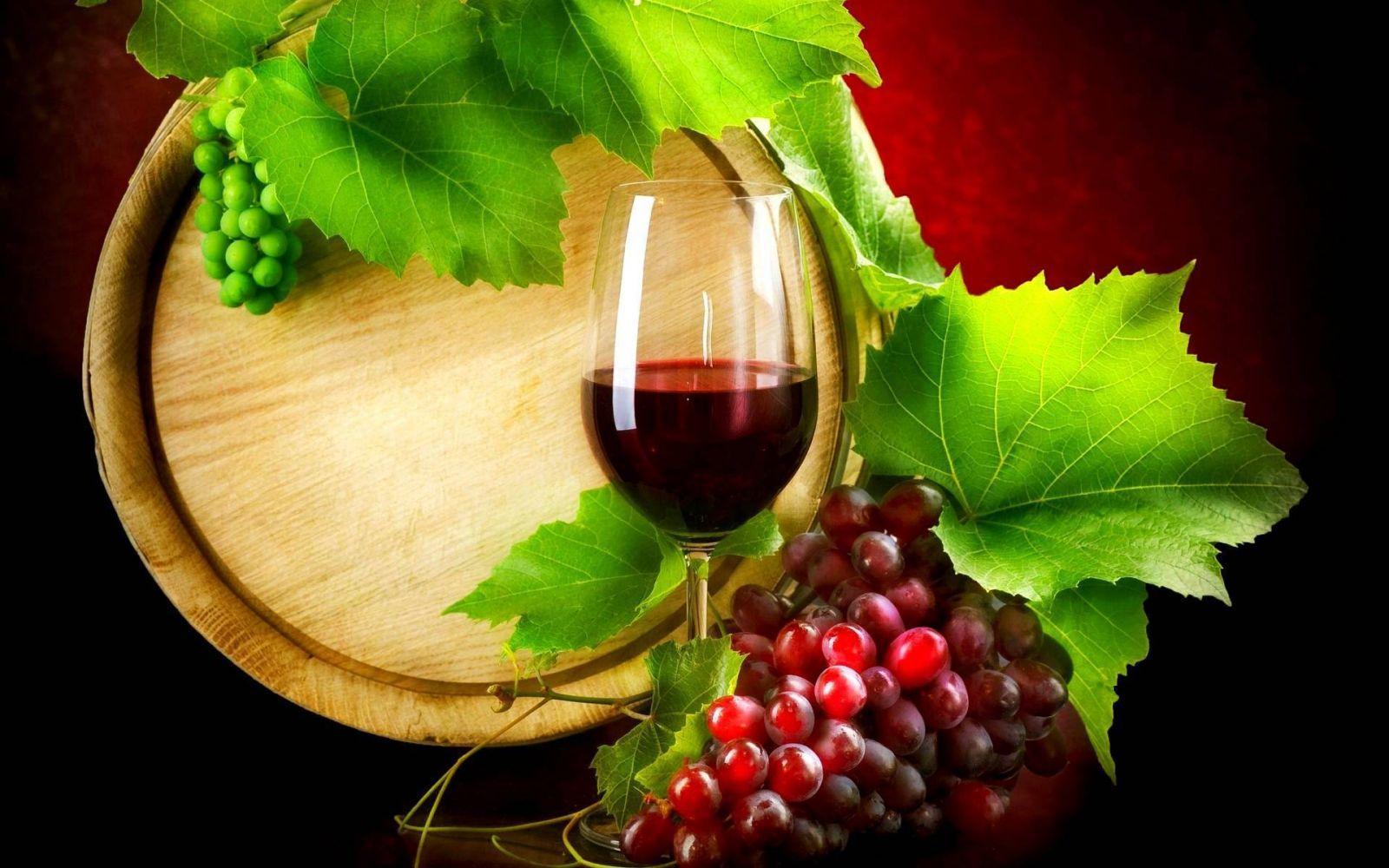 🍷 Os 50 melhores vinhos italianos de 2017 segundo o BIWA